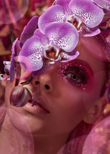 Sion orchids by mathilde karrer