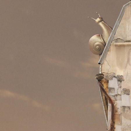 Zeynep represents flying houses pink